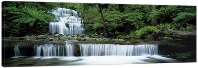 Liffey Falls, Tasmania, Australia Canvas Art Print