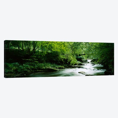 A Flowing River, Aberfeldy, Perthshire, County Of Perth, Scotland, United Kingdom Canvas Print #PIM354} by Panoramic Images Canvas Art Print
