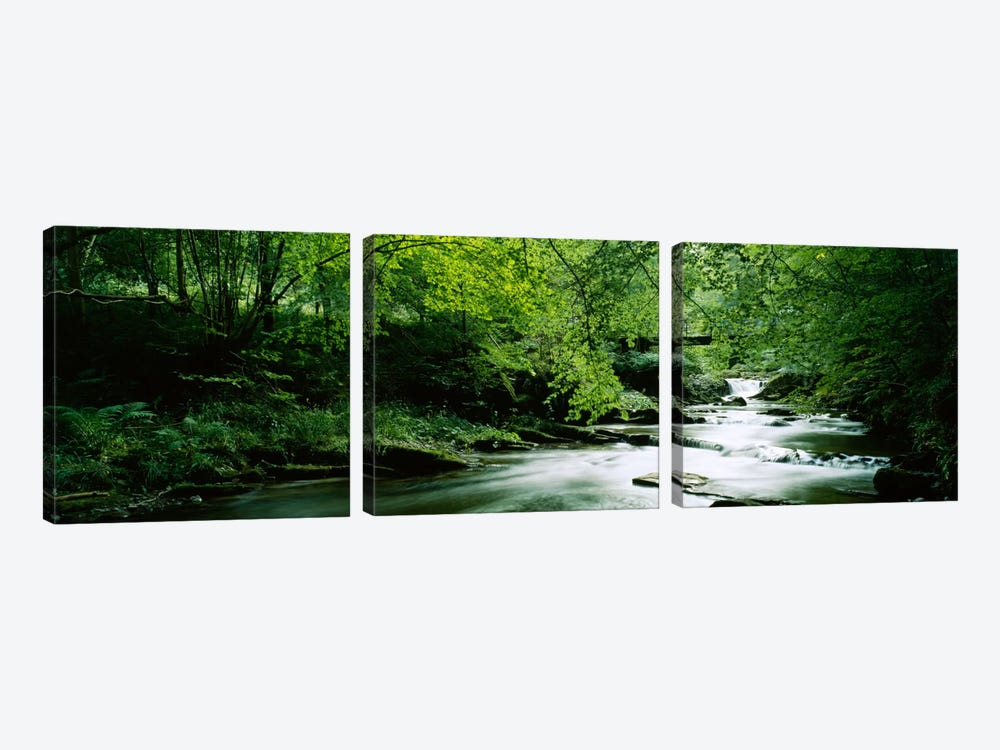 A Flowing River, Aberfeldy, Perthshire, County Of Perth, Scotland, United Kingdom by Panoramic Images 3-piece Canvas Art Print