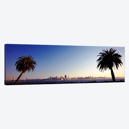 Palm Trees At Dusk, San Francisco, California, USA Canvas Print #PIM3550} by Panoramic Images Canvas Wall Art
