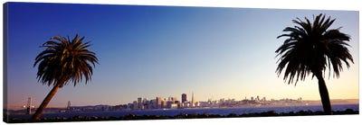 Palm Trees At Dusk, San Francisco, California, USA Canvas Print #PIM3550