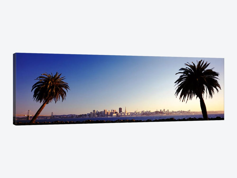 Palm Trees At Dusk, San Francisco, California, USA by Panoramic Images 1-piece Canvas Print