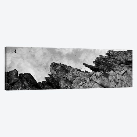 Birds Nesting In Cliffs, Norway Canvas Print #PIM3559} by Panoramic Images Canvas Art
