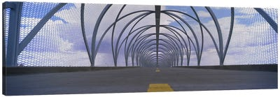 Chain-link fence covering a bridge, Snake Bridge, Tucson, Arizona, USA Canvas Print #PIM3633