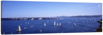 Yachts in the bay, Sydney Harbor, Sydney, New South Wales, Australia Canvas Art Print