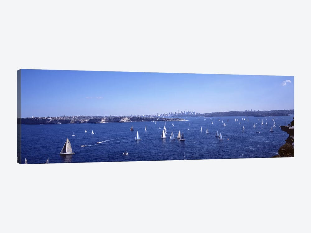 Yachts in the bay, Sydney Harbor, Sydney, New South Wales, Australia by Panoramic Images 1-piece Canvas Artwork