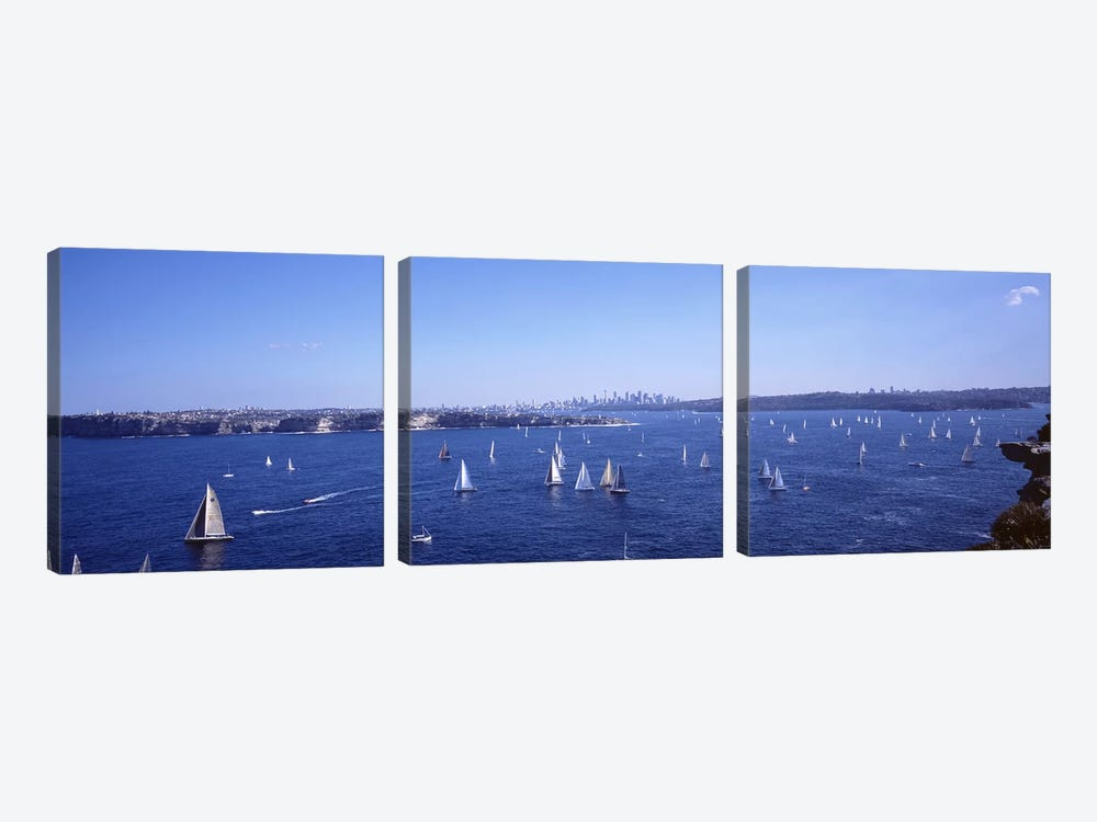 Yachts in the bay, Sydney Harbor, Sydney, New South Wales, Australia by Panoramic Images 3-piece Canvas Art