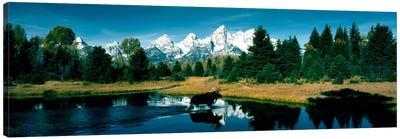 Moose & Beaver Pond Grand Teton National Park WY USA Canvas Art Print