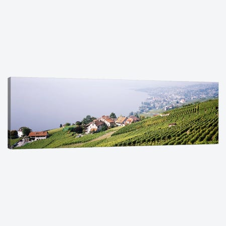 Hillside Sloping Vineyards, Lausanne, Vaud, Switzerland Canvas Print #PIM3797} by Panoramic Images Art Print