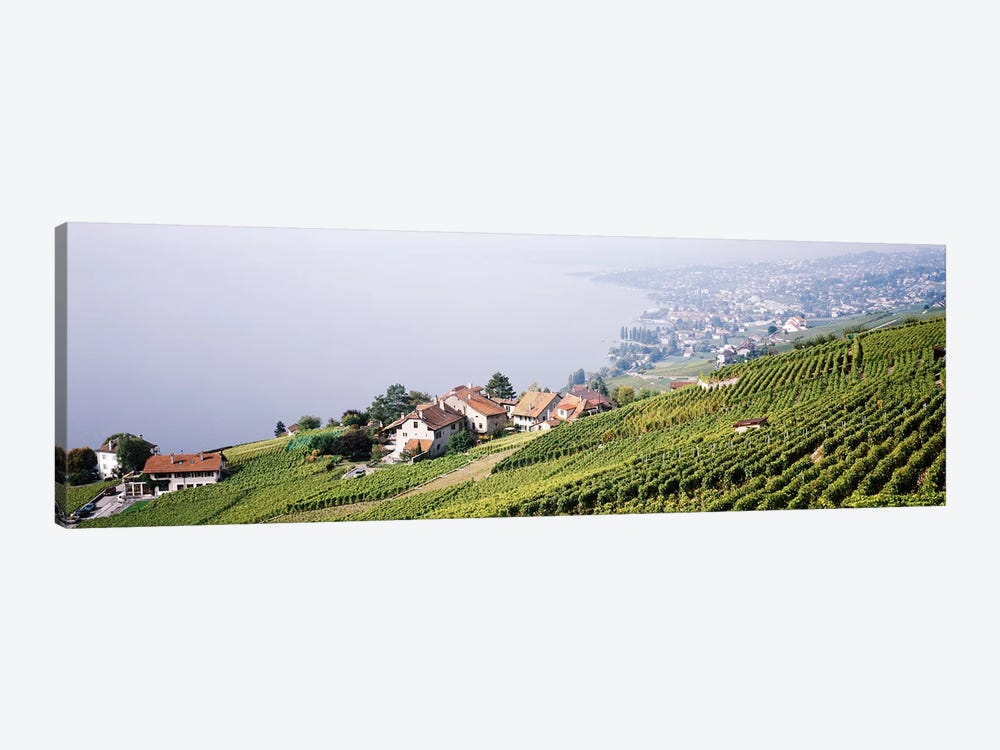 Hillside Sloping Vineyards, Lausanne, Vaud, Switzerland by Panoramic Images 1-piece Canvas Print