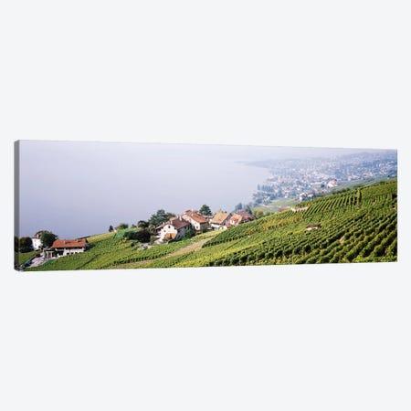 Hillside Sloping Vineyards, Lausanne, Vaud, Switzerland Canvas Print #PIM3797} by Panoramic Images Art Print