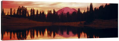 Reflection of trees in water, Tipsoo Lake, Mt Rainier, Mt Rainier National Park, Washington State, USA Canvas Art Print