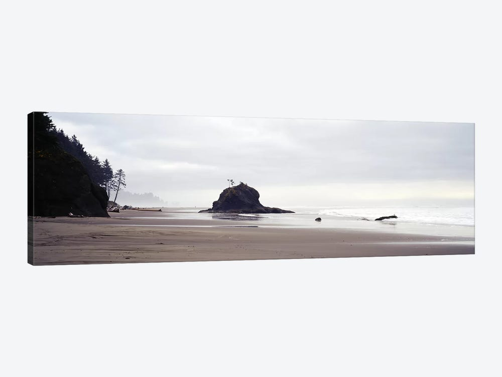 Coast La Push Olympic National Park WA by Panoramic Images 1-piece Canvas Wall Art