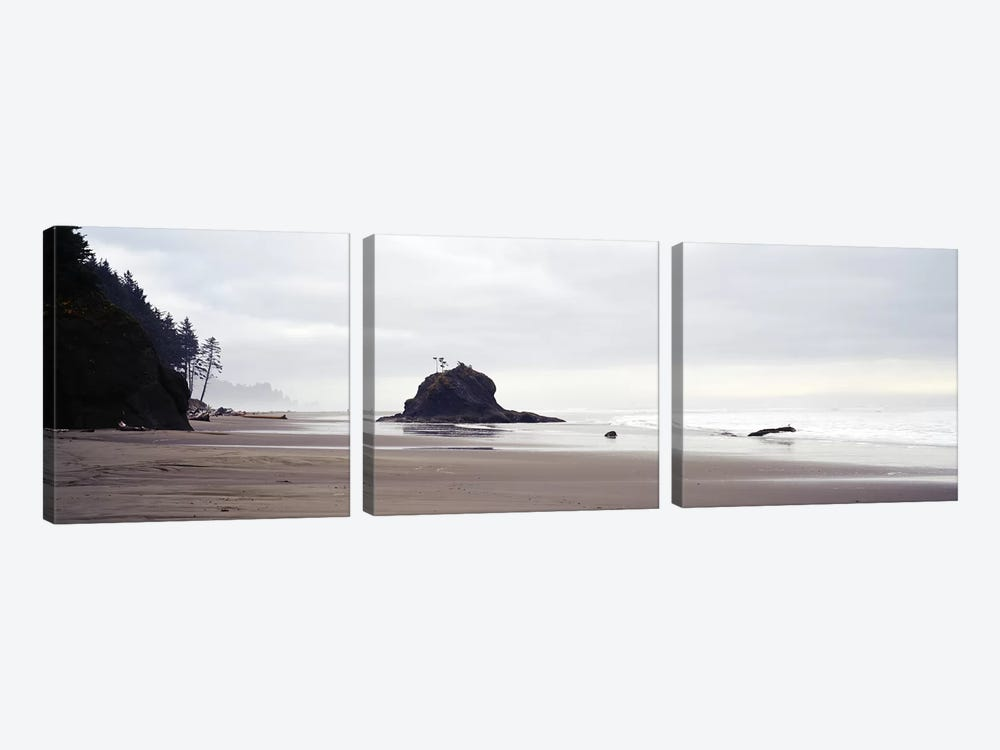 Coast La Push Olympic National Park WA by Panoramic Images 3-piece Canvas Wall Art