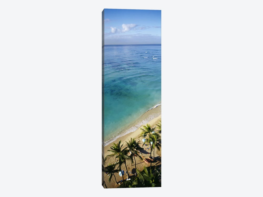 High angle view of palm trees with beach umbrellas on the beach, Waikiki Beach, Honolulu, Oahu, Hawaii, USA by Panoramic Images 1-piece Canvas Wall Art