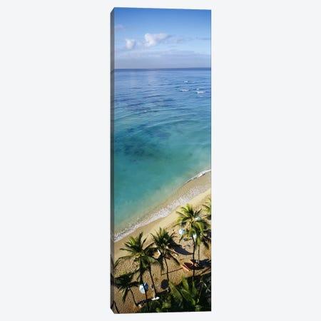 High angle view of palm trees with beach umbrellas on the beach, Waikiki Beach, Honolulu, Oahu, Hawaii, USA Canvas Print #PIM3858} by Panoramic Images Art Print
