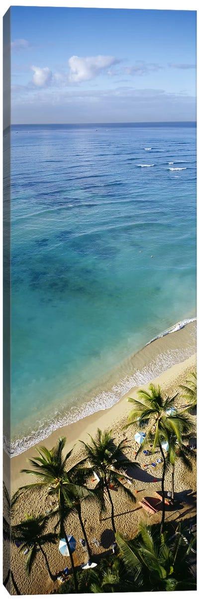High angle view of palm trees with beach umbrellas on the beach, Waikiki Beach, Honolulu, Oahu, Hawaii, USA Canvas Art Print