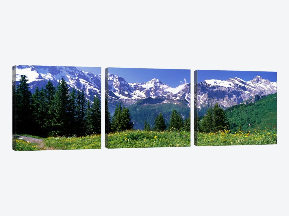 Murren Switzerland by Panoramic Images 3-piece Canvas Art Print
