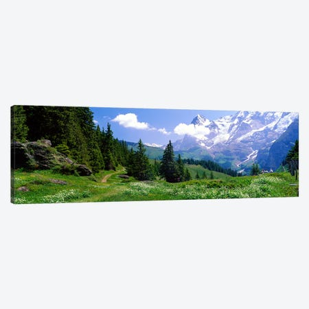 Alpine Scene Near Murren Switzerland Canvas Print #PIM3881} by Panoramic Images Canvas Artwork