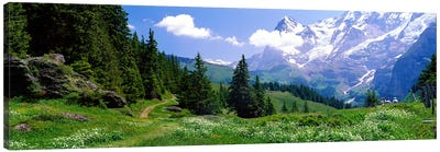 Alpine Scene Near Murren Switzerland Canvas Print #PIM3881