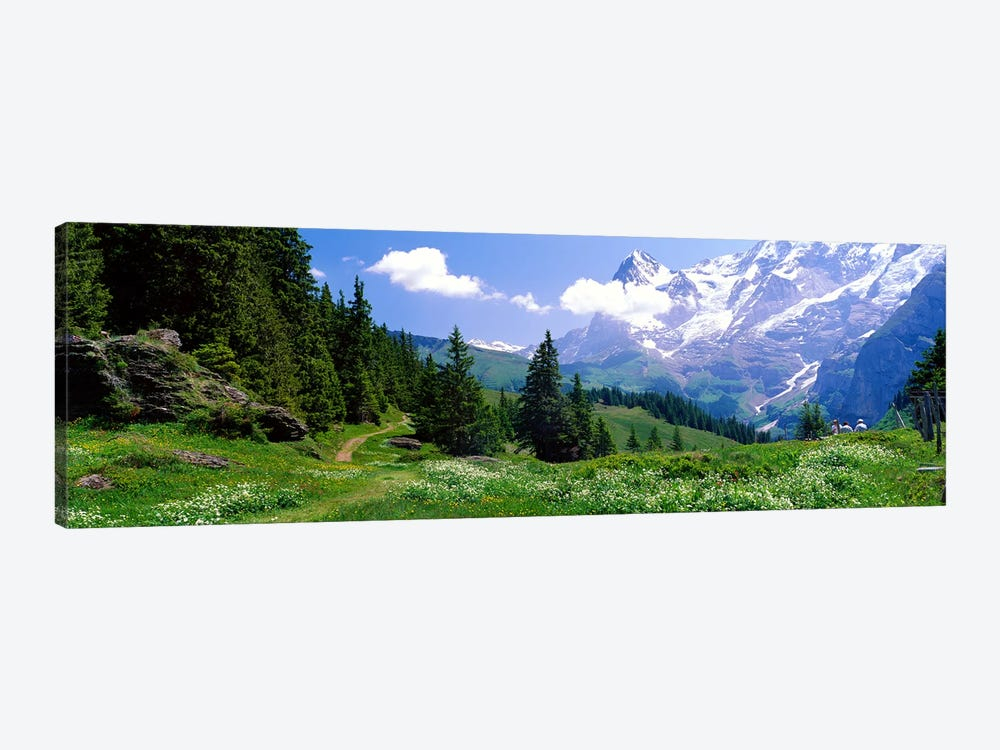 Alpine Scene Near Murren Switzerland 1-piece Canvas Art