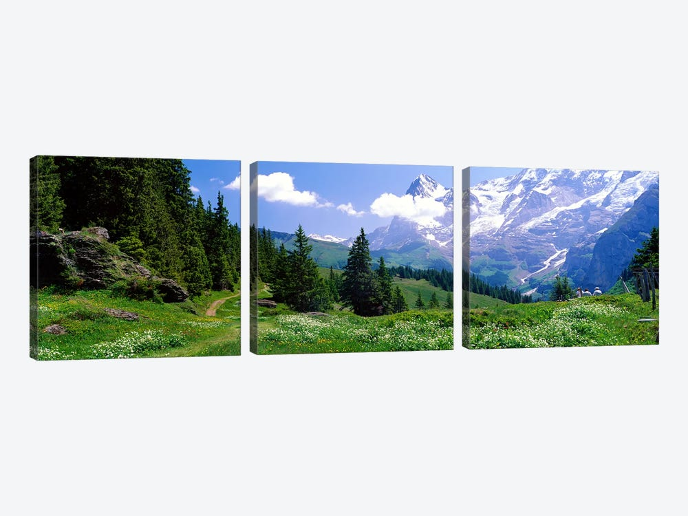 Alpine Scene Near Murren Switzerland 3-piece Canvas Artwork