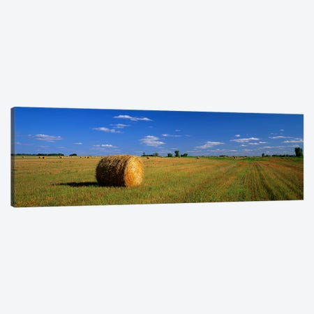 Bales Of Hay, South Dakota, USA Canvas Print #PIM3890} by Panoramic Images Canvas Art Print