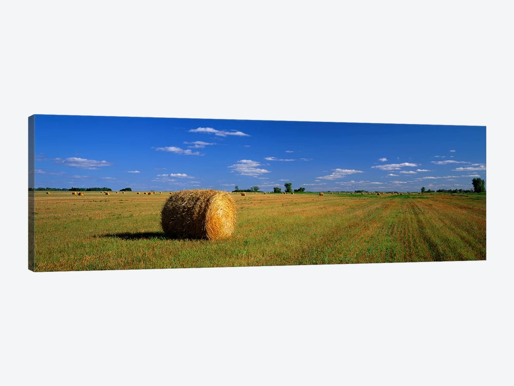 Bales Of Hay, South Dakota, USA by Panoramic Images 1-piece Canvas Art