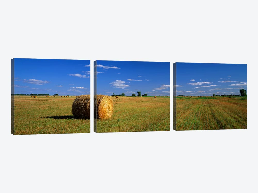 Bales Of Hay, South Dakota, USA by Panoramic Images 3-piece Canvas Artwork