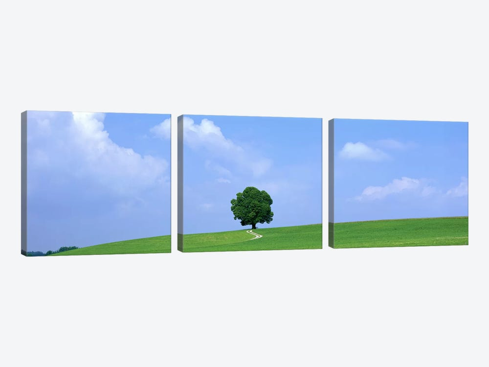 Lone Tree on Hilltop Salzkammergut Austria by Panoramic Images 3-piece Canvas Art