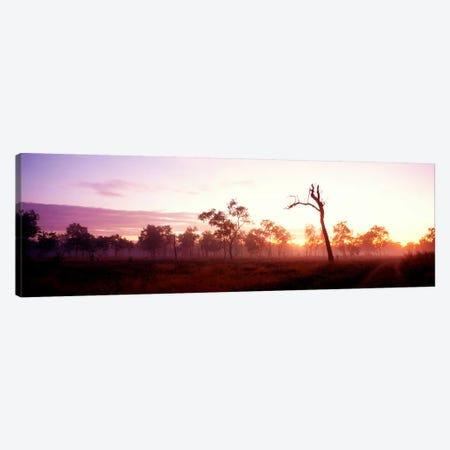 Kakadu National Park Northern Territory Australia Canvas Print #PIM3898} by Panoramic Images Art Print