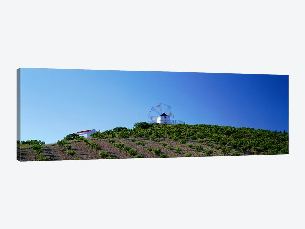 Windmill Obidos Portugal by Panoramic Images 1-piece Art Print