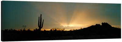 Desert Sunbeams, Near Phoenix, Arizona, USA Canvas Print #PIM3918