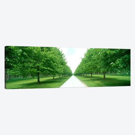 Avenue at Chateau de Modave Ardennes Belgium Canvas Print #PIM3920} by Panoramic Images Canvas Art Print