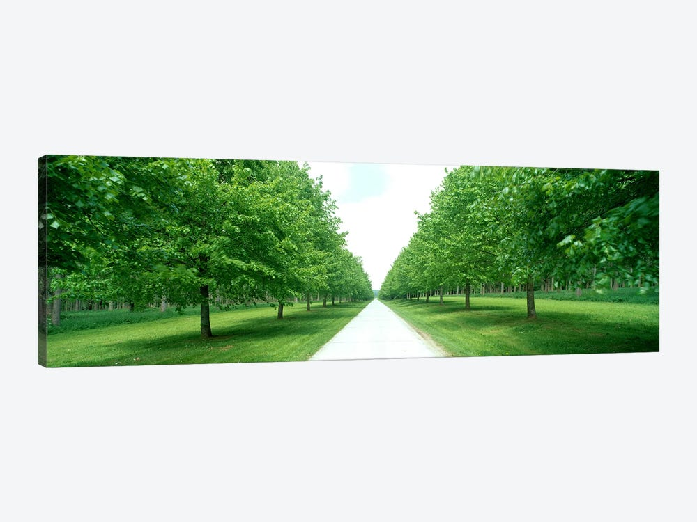 Avenue at Chateau de Modave Ardennes Belgium by Panoramic Images 1-piece Canvas Wall Art
