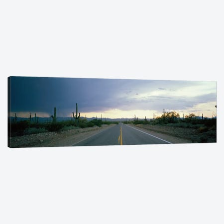 Desert Road near Tucson Arizona USA Canvas Print #PIM3922} by Panoramic Images Art Print