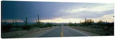 Desert Road near Tucson Arizona USA Canvas Art Print