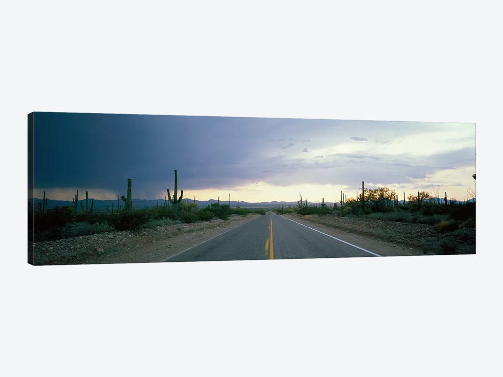 Desert Road near Tucson Arizona USA by Panoramic Images 1-piece Canvas Art