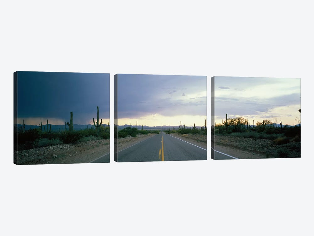 Desert Road near Tucson Arizona USA by Panoramic Images 3-piece Canvas Artwork