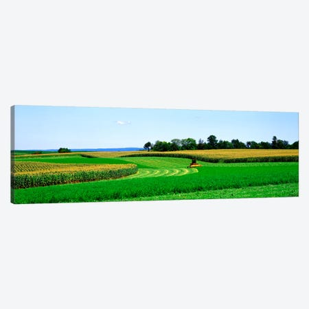 A Combine Harvesting The Crop, Frederick County, Maryland, USA Canvas Print #PIM394} by Panoramic Images Art Print