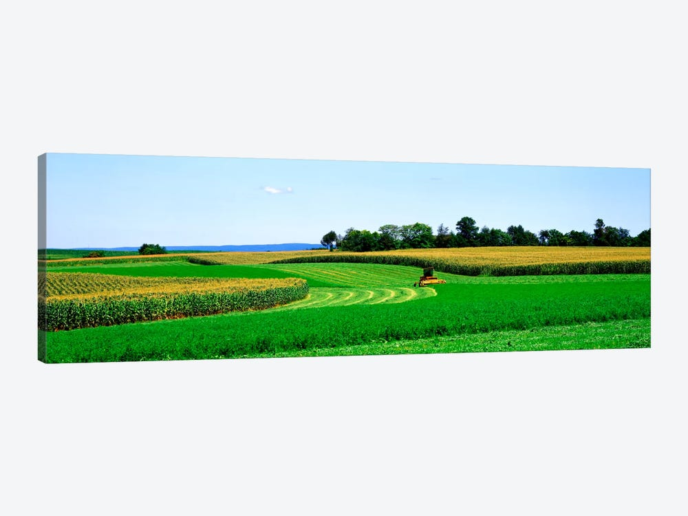 A Combine Harvesting The Crop, Frederick County, Maryland, USA by Panoramic Images 1-piece Canvas Print