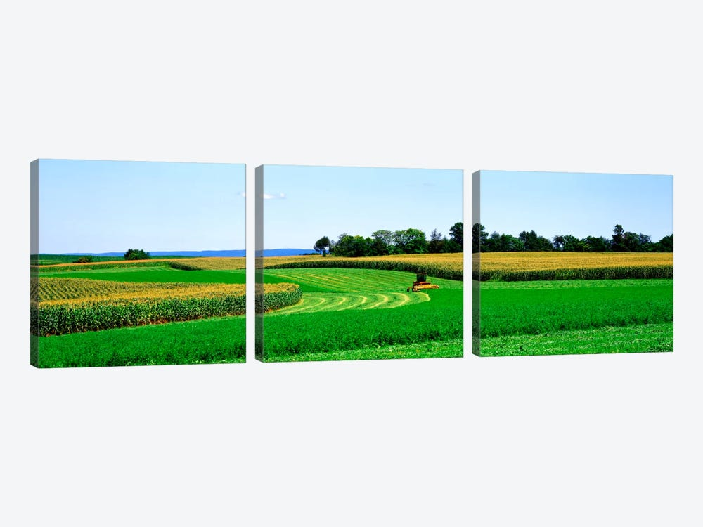 A Combine Harvesting The Crop, Frederick County, Maryland, USA by Panoramic Images 3-piece Art Print