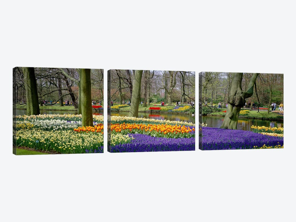 Keukenhof Garden Lisse The Netherlands by Panoramic Images 3-piece Canvas Art