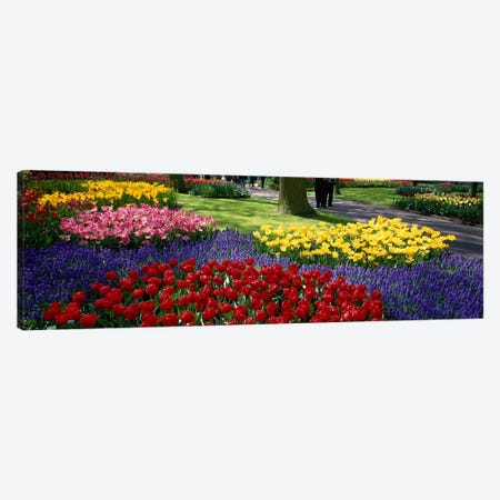 Keukenhof II, Lisse, South Holland, Kingdom Of The Netherlands Canvas Print #PIM3976} by Panoramic Images Art Print
