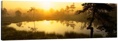 Foggy Woodland Sunrise And It's Reflection, Vastmanland, Sweden Canvas Art Print