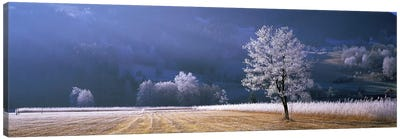 Frosted Countryside Morning, Tyrol, Austria Canvas Art Print