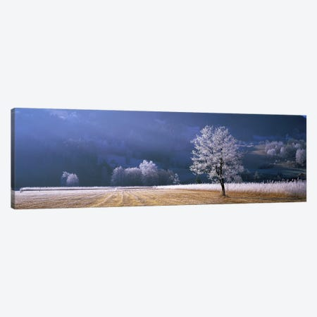 Frosted Countryside Morning, Tyrol, Austria Canvas Print #PIM4003} by Panoramic Images Art Print