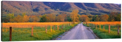 Road At Sundown, Cades Cove, Great Smoky Mountains National Park, Tennessee, USA Canvas Art Print