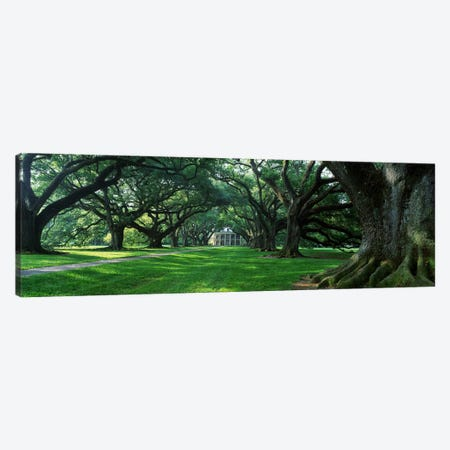 USA, Louisiana, New Orleans, Oak Alley Plantation, plantation home through alley of oak trees Canvas Print #PIM4142} by Panoramic Images Canvas Art