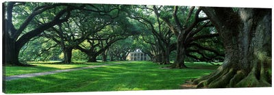 USA, Louisiana, New Orleans, Oak Alley Plantation, plantation home through alley of oak trees Canvas Art Print